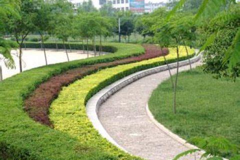 哈尔滨工业大学深圳研究生院园林绿化养护